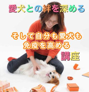 開催日時のお知らせ オキシトシンエクササイズ with Pet